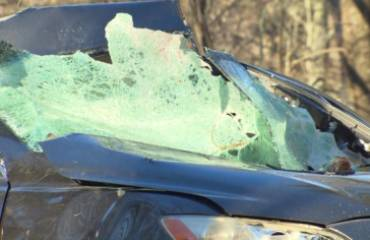 Andover accident tree falls on car