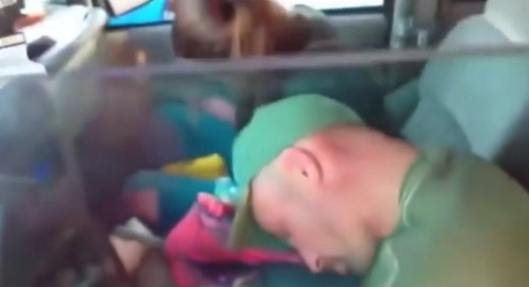 Children taken after 'drugged' Florida couple filmed passed out in car
