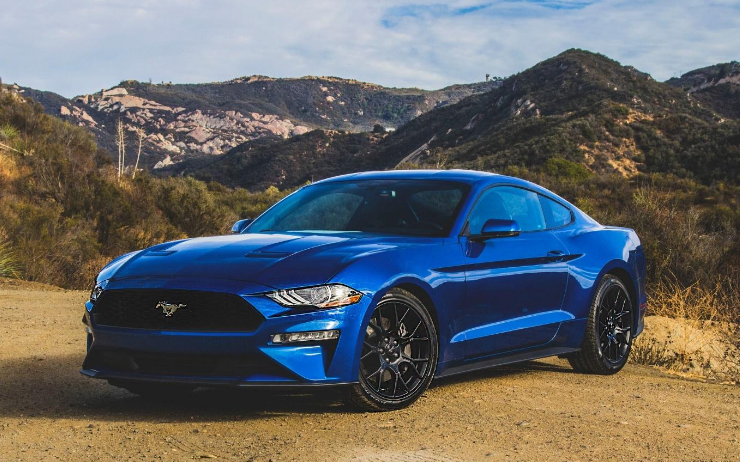 Mustang images