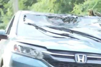 Car crash in Housatonic River in Seymour